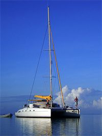 Image Result For Vacation Packages To Tahiti Elegant Tahiti Cruises Bora Bora Cruise Vacations To Bora Bora