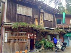 キノコの館