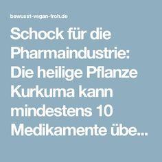 Schock für die Pharmaindustrie: Die heilige Pflanze Kurkuma kann mindestens 10 Medikamente überflüssig machen - ☼ ✿ ☺ Informationen und Inspirationen für ein Bewusstes, Veganes und (F)rohes Leben ☺ ✿ ☼