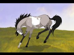 Trevor age: 23 about: he is the herd leader and the strongest horse in the herd he isn't afraid of anything and treats everyone in the herd with respect Has no mate Needs one to rule with him Horse Drawings, Cute Animal Drawings, Cool Drawings, Pretty Horses, Horse Love, Beautiful Horses, Spirit The Horse, Spirit And Rain, Arte Aries