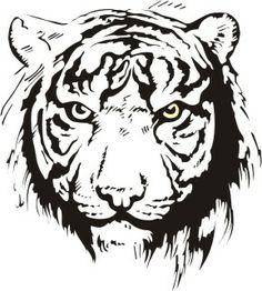 Dzikie koty 10 - tygrys