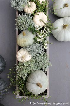 room decor This table top decor for fall is absolutely beautiful. Using white pumpkins and . This table top decor for fall is absolutely beautiful. Using white pumpkins and painting them unique tones like this will set your fall decor apart! Thanksgiving Decorations, Seasonal Decor, Holiday Decor, Thanksgiving Tablescapes, Diy Thanksgiving, Holiday Parties, Thanksgiving Celebration, Christmas Decor, Autumn Decorating
