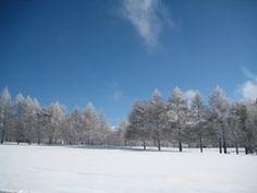 Panoramio - Photo of Le golf d'hiver - Crans Montana