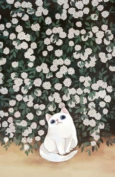 Animal illustration -- white cat with flowers Cat Wallpaper, Kawaii Wallpaper, Wallpaper Backgrounds, Art And Illustration, Illustrations, Cat Drawing, Crazy Cats, Cat Art, Cute Animals
