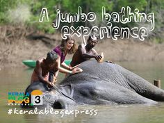 Kerala Tourism Official - Google+
