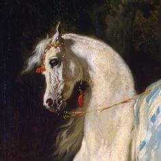 Horsewoman by Alfred De Dreux (detail) Animal Paintings, Horse Paintings, Italian Renaissance Art, Native American Horses, Arabian Art, Horse Posters, Horse Illustration, Horse Artwork, Horse Drawings