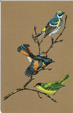 Vintage-Swap-Playing-Card-1-SINGLE-BIRDS-GOLD-BACKGROUND