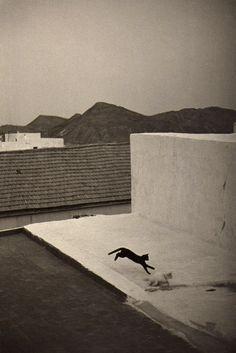 Bernard Plossu con cámara de usar y tirar Almería, Cabo de Gata.