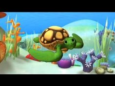 Sea Turtles, Alex educational cartoon - Discover the ocean with cartoons - YouTube