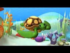 Alex en el mar: Tortuga marina - Aprende sobre animales con Alex - YouTube