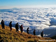 Breathtaking scenery at Mt. Pulag, Philippines