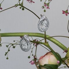 """Rondes de Nuit is a night star adorned with shimmering stones that cast a precious spell. Joséphine """"Rondes de Nuit"""" earrings in platinum, set with diamonds, of which two pear-shaped diamonds, one weighing 1.50 carats, the other 1.56 carats."""