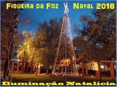 O Palhetas na Foz: Iluminação de Natal ligada hoje na Figueira da Foz...