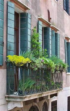 Shutters and balcony. Fabulous!