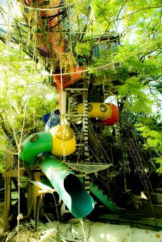 kids play tree | Admit it, you'd wish you were still small enough to have a go too!
