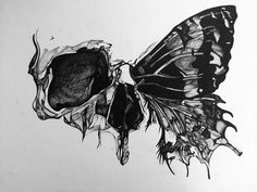 Simple yet beautiful Skull Butterfly Tattoo, Tatto Skull, Butterfly Tattoo Designs, Skull Tattoo Design, Butterfly Design, Butterfly Sketch, Skull Design, White Butterfly, Butterfly Artwork