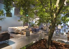 Sou Fujimoto suspends trees above Cassina's Milan 2014 display space
