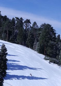 Snow Summit by Big Bear Mountain Resorts, learned to ski here.