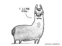 gemma correll and her merry band of misfits: tthis llama llikes yyou