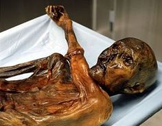 Ötzi (pronounced [ˈœtsi] ( listen), also called Ötzi the Iceman, the Similaun Man, the Man from Hauslabjoch, Homo tyrolensis, and the Hauslabjoch mummy) is a well-preserved natural mummy of a man who lived about 3,300 BC.[2][3] The mummy was found in September 1991 in the Ötztal Alps, hence Ötzi, near the Similaun mountain and Hauslabjoch on the border between Austria and Italy.[4] He is Europe's oldest natural human mummy, and has offered an unprecedented view of Ch