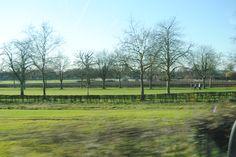UK - Windsor Castle gardens