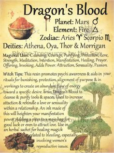 Magic Herbs, Herbal Magic, Plant Magic, Spiritual Enlightenment, Spirituality, Spiritual Awakening, Candle Spells, Candle Magic, Eclectic Witch
