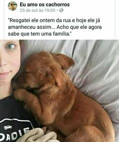 ADOTE e receba amor incondicional! Com Luisa Mell Like Animals, Animals And Pets, Love Pet, I Love Dogs, Amor Animal, Memes Status, Cute Love, Cute Puppies, Dog Lovers