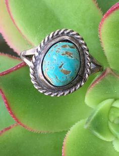Navajo Turquoise Ring in Sterling Size: 6