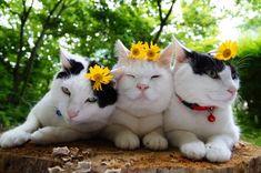- ̗̀ your beautifully perfect  ̖́- Pinterest: haganspinterest