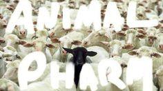 NEW MUSIC: LUPE FIASCO – ANIMAL PHARM