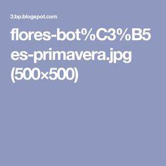 flores-bot%C3%B5es-primavera.jpg (500×500)