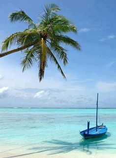 I would love to visit the Bahama Islands!