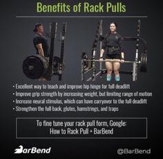Leg Day Workouts, Killer Workouts, Weight Training Workouts, Easy Workouts, Grip Strength Exercises, Bikini Workout, Bikini Fitness, Martial Arts Workout, Different Exercises