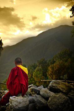 Mediteer iedere dag 20 minuten.  Tenzij je het te druk hebt.  Mediteer dan een uur.     Oude Zen wijsheid