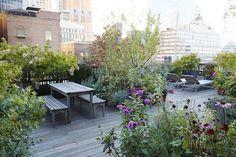 Garden Visit: At Home with Vanity Fair Art Director Julie Weiss in Manhattan: Gardenista