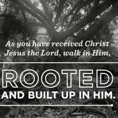 Our roots grow deeper when we're intentional to abide in His presence and soak in His Word. And when we're rooted in Christ, no storm can make the end of us, because our God is greater. No storm. No trial. No heartache. Nothing is too big for God. He can overcome it all because He already overcame it all. Jesus conquered death on our behalf. Now an eternity with Him awaits. Yes, we may endure hardship for a time, but God has bound every storm to eventually pass. We can withstand any storm.