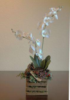 Christmas Phalaenopsis Orchid Arrangement by HoffmansForestGarden