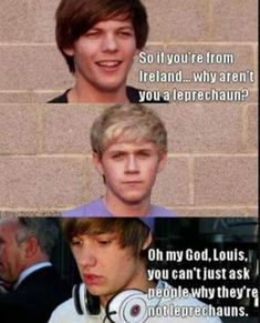 One Direction -- Louis Tomlinson, Niall Horan, and Liam Payne Memes One Direction, One Direction Fotos, One Direction Pictures, I Love One Direction, A Thousand Years, Bae, First Love, My Love, My Tumblr