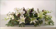 Philanopsis Orchids, Dendrobium Orchids, Orchid lilies, Magnolia lilies, Variegated mock orange ...