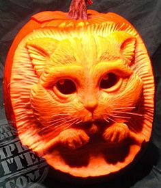 The 559 Best Pumpkin Carving Images On Pinterest In 2019 Halloween