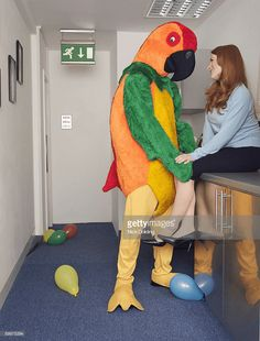 Stock-Foto : Man in parrot outfit with co worker Weird Pictures, Reaction Pictures, Stock Pictures, Stupid Memes, Stupid Funny, Funny Memes, Dankest Memes, Awkward Photos, Funny Photos