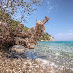 #samos #samosisland #samosbeaches #greece #greekislands #greeksummer2017 #reasontovisitgreece #loves_greece #wu_greece #aegeanbestpictures #greecebestpictures #samosbestpictures #samosisland #holidays #kerkisbayhotel #kerkisbay #greecestagram #beach #sea #sun #greeksun #greekbeauty #greekbeaches #greecelover_gr