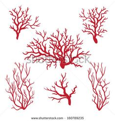 Coral - stock vector