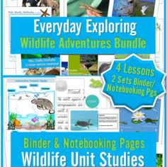 FREE Wildlife Adventures Notebooking Pages and Unit Study