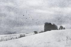 fairy tales of snow