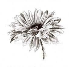 Les 68 Meilleures Images Du Tableau Dessin Sur Pinterest Drawing