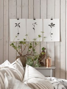 love the simplicity of this  Visit Centophobe.com for more decrating ideas...