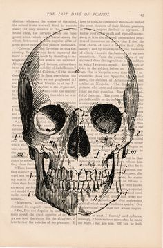 vintage halloween dictionary skull