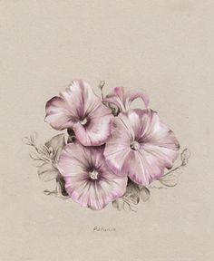 NZ Home and Garden Magazine - Petunia