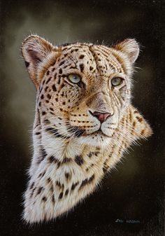 ildlife art painting of Persian leopard by wildlife artist Eric Wilson. Wildlife Paintings, Wildlife Art, Animal Paintings, Animal Drawings, Art Paintings, Beautiful Cats, Animals Beautiful, Cute Animals, Big Cats Art